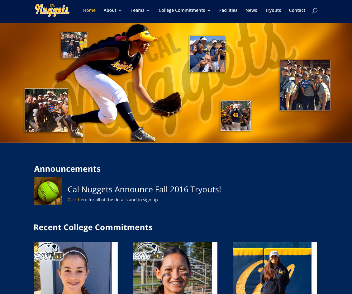 CAL-Nuggets-Website-2